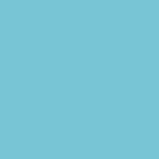 Rocket CRM favicon